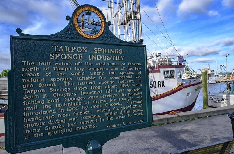 Tarpon Springs Hurricane Protection Products